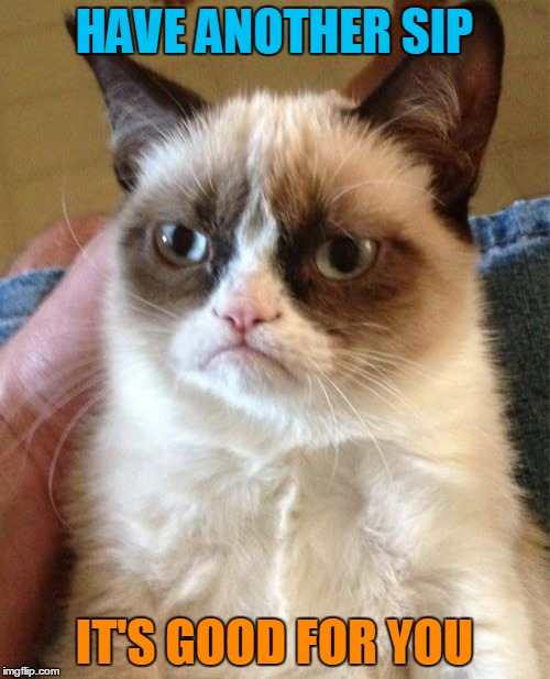 Grumpy Cat Meme | HAVE ANOTHER SIP IT'S GOOD FOR YOU | image tagged in memes,grumpy cat | made w/ Imgflip meme maker