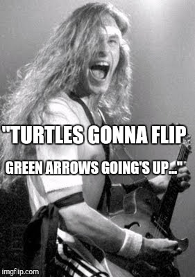 "Memes | ""TURTLES GONNA FLIP GREEN ARROWS GOING'S UP..."" 