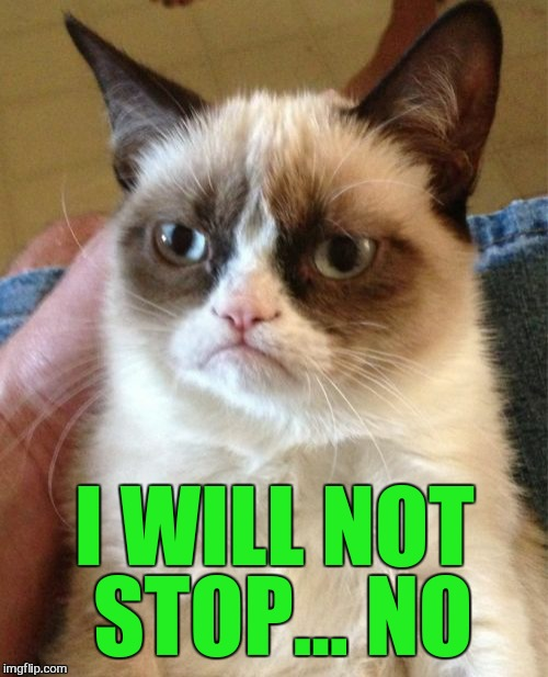 Grumpy Cat Meme | I WILL NOT STOP... NO | image tagged in memes,grumpy cat | made w/ Imgflip meme maker