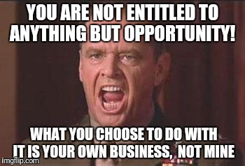 you can't jhandle the truth | YOU ARE NOT ENTITLED TO ANYTHING BUT OPPORTUNITY! WHAT YOU CHOOSE TO DO WITH IT IS YOUR OWN BUSINESS,  NOT MINE | image tagged in you can't jhandle the truth | made w/ Imgflip meme maker