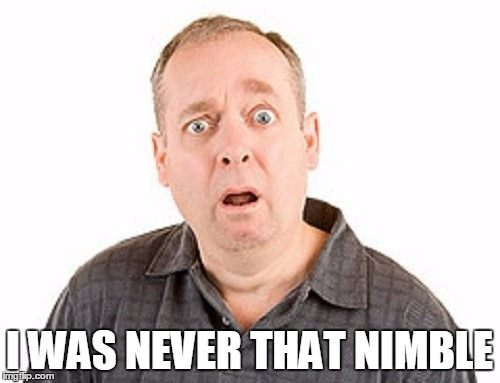 I WAS NEVER THAT NIMBLE | made w/ Imgflip meme maker