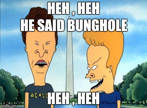 HE SAID BUNGHOLE | image tagged in beavis and butthead | made w/ Imgflip meme maker