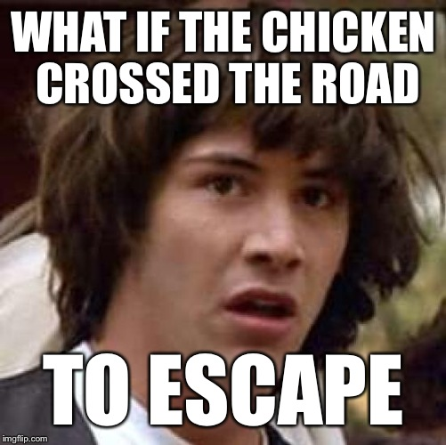 Conspiracy Keanu Meme | WHAT IF THE CHICKEN CROSSED THE ROAD TO ESCAPE | image tagged in memes,conspiracy keanu | made w/ Imgflip meme maker