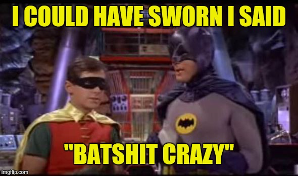 "I COULD HAVE SWORN I SAID ""BATSHIT CRAZY"" 
