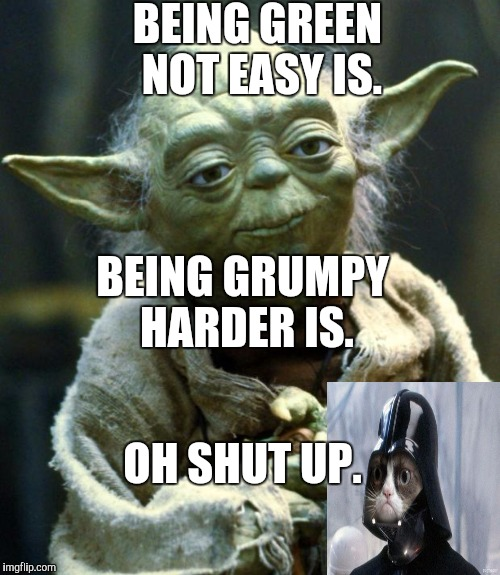 Green versus grumpy. | BEING GREEN NOT EASY IS. BEING GRUMPY HARDER IS. OH SHUT UP. | image tagged in memes,star wars yoda,funny,humor,yoda,grumpy cat vader | made w/ Imgflip meme maker