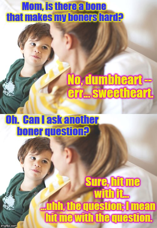An uncomfy convo | Mom, is there a bone that makes my boners hard? No, dumbheart -- err... sweetheart. Oh.  Can I ask another boner question? Sure, hit me with | image tagged in memes,funny,kids,phunny,boner,mother and son | made w/ Imgflip meme maker