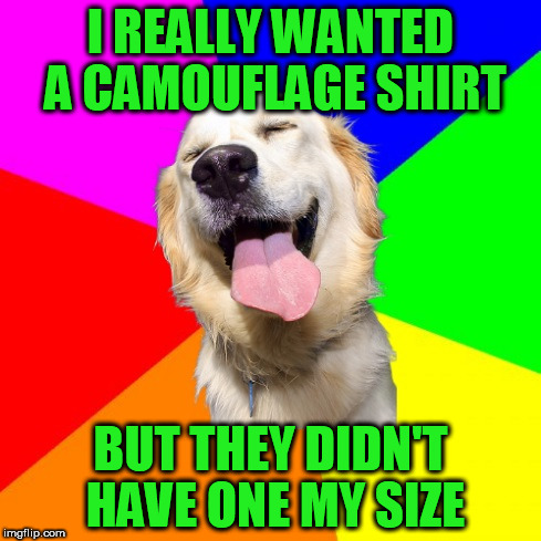 I REALLY WANTED A CAMOUFLAGE SHIRT BUT THEY DIDN'T HAVE ONE MY SIZE | image tagged in anti pun dog | made w/ Imgflip meme maker