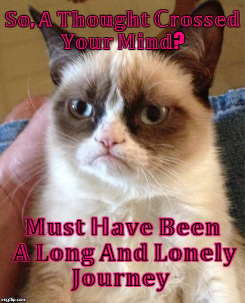 ɢʀᴜᴍᴘʏ ᴄᴀᴛ  | image tagged in memes,grumpy cat,grumpy cat insults,google,craziness_all_the_way,thinking too much | made w/ Imgflip meme maker