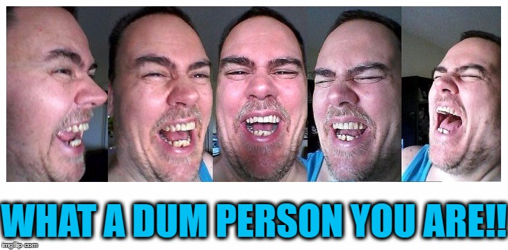 LOL | WHAT A DUM PERSON YOU ARE!! | image tagged in lol | made w/ Imgflip meme maker