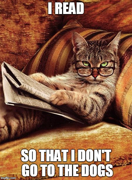cat reading | I READ SO THAT I DON'T GO TO THE DOGS | image tagged in cat reading | made w/ Imgflip meme maker