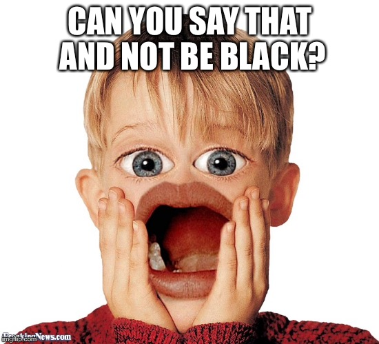 CAN YOU SAY THAT AND NOT BE BLACK? | made w/ Imgflip meme maker