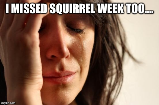 First World Problems Meme | I MISSED SQUIRREL WEEK TOO.... | image tagged in memes,first world problems | made w/ Imgflip meme maker