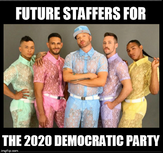 FUTURE STAFFERS FOR THE 2020 DEMOCRATIC PARTY | image tagged in democrat party | made w/ Imgflip meme maker