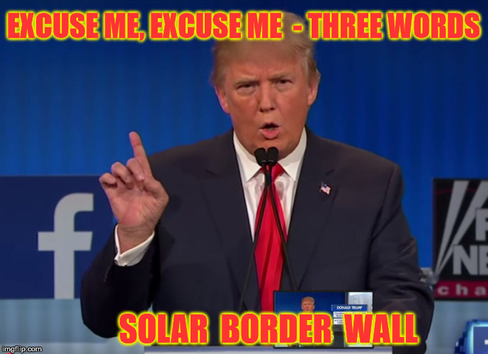 Were Gonna Build a Wall | EXCUSE ME, EXCUSE ME  - THREE WORDS SOLAR  BORDER  WALL | image tagged in trump,memes,cats,walls,dogs,balls | made w/ Imgflip meme maker