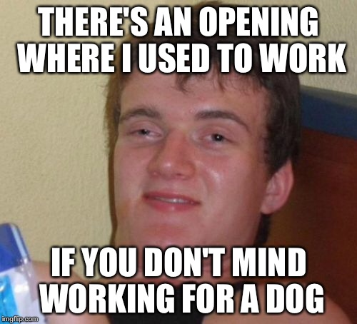 10 Guy Meme | THERE'S AN OPENING WHERE I USED TO WORK IF YOU DON'T MIND WORKING FOR A DOG | image tagged in memes,10 guy | made w/ Imgflip meme maker