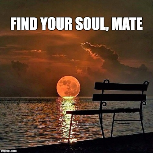 Romantic sunset | FIND YOUR SOUL, MATE | image tagged in romantic sunset | made w/ Imgflip meme maker