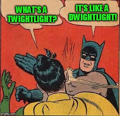 Batman Slapping Robin Meme | WHAT'S A TWIGHTLIGHT? IT'S LIKE A DWIGHTLIGHT! | image tagged in memes,batman slapping robin | made w/ Imgflip meme maker