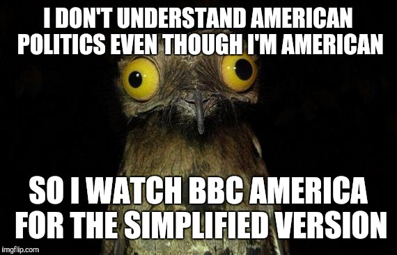 Weird Stuff I Do Potoo Meme | I DON'T UNDERSTAND AMERICAN POLITICS EVEN THOUGH I'M AMERICAN SO I WATCH BBC AMERICA FOR THE SIMPLIFIED VERSION | image tagged in memes,weird stuff i do potoo | made w/ Imgflip meme maker