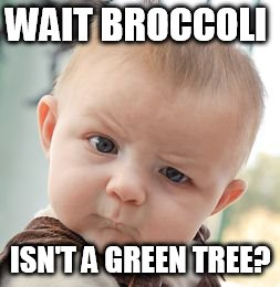 Skeptical Baby Meme | WAIT BROCCOLI ISN'T A GREEN TREE? | image tagged in memes,skeptical baby | made w/ Imgflip meme maker