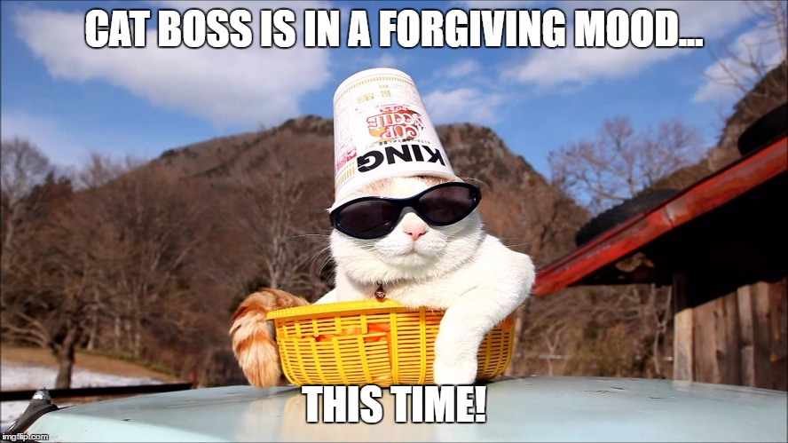 CAT BOSS IS IN A FORGIVING MOOD... THIS TIME! | made w/ Imgflip meme maker