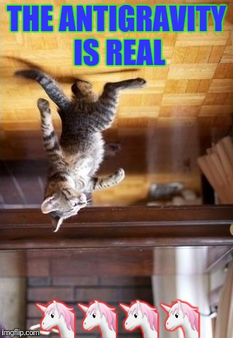 Cool Cat Stroll Meme | THE ANTIGRAVITY IS REAL  | image tagged in memes,cool cat stroll | made w/ Imgflip meme maker