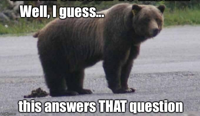The real answer is: Wherever he wants | Well, I guess... this answers THAT question | image tagged in does a bear shit in the woods,funny | made w/ Imgflip meme maker