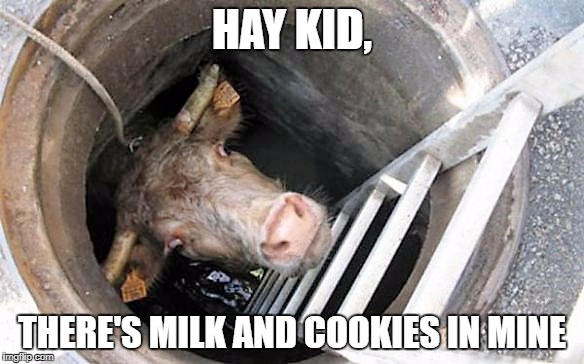 HAY KID, THERE'S MILK AND COOKIES IN MINE | made w/ Imgflip meme maker