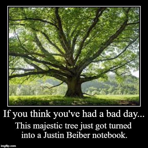 If you think you've had a bad day... | This majestic tree just got turned into a Justin Beiber notebook. | image tagged in funny,demotivationals | made w/ Imgflip demotivational maker