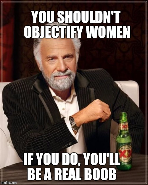 Don't be a boob  | YOU SHOULDN'T OBJECTIFY WOMEN IF YOU DO, YOU'LL BE A REAL BOOB | image tagged in memes,the most interesting man in the world,boobs,jbmemegeek | made w/ Imgflip meme maker