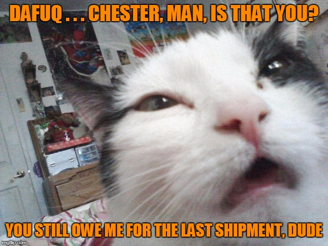 DAFUQ . . . CHESTER, MAN, IS THAT YOU? YOU STILL OWE ME FOR THE LAST SHIPMENT, DUDE | made w/ Imgflip meme maker