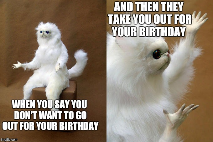 You know, that moment when the ears and brain don't correlate the information? | WHEN YOU SAY YOU DON'T WANT TO GO OUT FOR YOUR BIRTHDAY AND THEN THEY TAKE YOU OUT FOR YOUR BIRTHDAY | image tagged in memes,persian cat room guardian | made w/ Imgflip meme maker