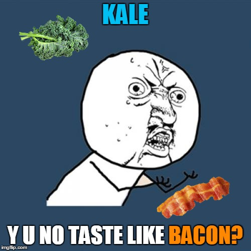 Y U No Meme | KALE Y U NO TASTE LIKE BACON? BACON? | image tagged in memes,y u no | made w/ Imgflip meme maker