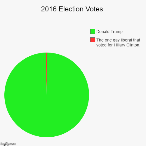 2016 Election Votes | The one gay liberal that voted for Hillary Clinton., Donald Trump. | image tagged in funny,pie charts | made w/ Imgflip pie chart maker