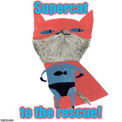 Supercat to the rescue! | made w/ Imgflip meme maker