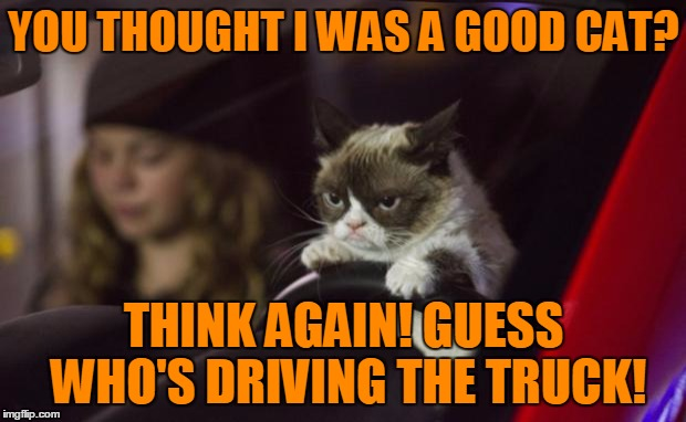 YOU THOUGHT I WAS A GOOD CAT? THINK AGAIN! GUESS WHO'S DRIVING THE TRUCK! | made w/ Imgflip meme maker