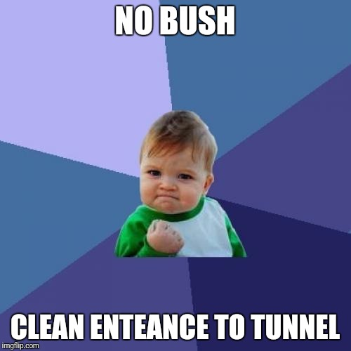 Success Kid Meme | NO BUSH CLEAN ENTEANCE TO TUNNEL | image tagged in memes,success kid | made w/ Imgflip meme maker