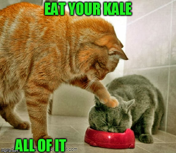 EAT YOUR KALE ALL OF IT | made w/ Imgflip meme maker