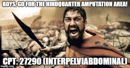 Sparta Leonidas Meme | BOYS, GO FOR THE HINDQUARTER AMPUTATION AREA! CPT: 27290 (INTERPELVIABDOMINAL) | image tagged in memes,sparta leonidas | made w/ Imgflip meme maker