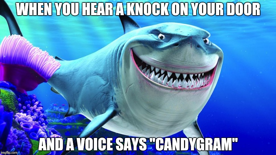 "Happy Shark | WHEN YOU HEAR A KNOCK ON YOUR DOOR AND A VOICE SAYS ""CANDYGRAM"" 