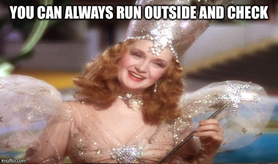 YOU CAN ALWAYS RUN OUTSIDE AND CHECK | made w/ Imgflip meme maker