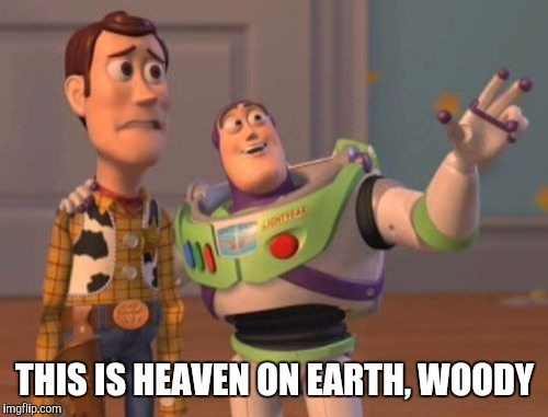 X, X Everywhere Meme | THIS IS HEAVEN ON EARTH, WOODY | image tagged in memes,x,x everywhere,x x everywhere | made w/ Imgflip meme maker