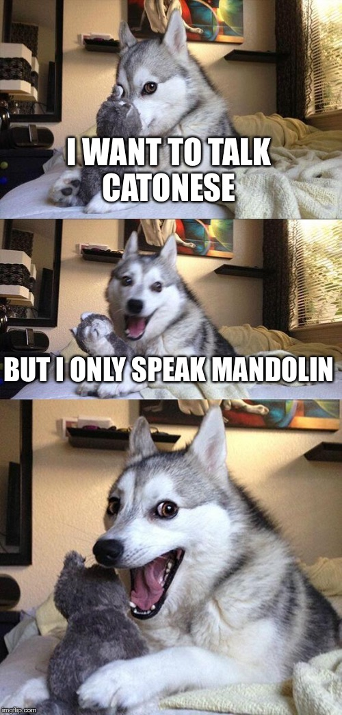 Bad Pun Dog Meme | I WANT TO TALK CATONESE BUT I ONLY SPEAK MANDOLIN | image tagged in memes,bad pun dog | made w/ Imgflip meme maker