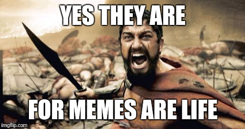 Sparta Leonidas Meme | YES THEY ARE FOR MEMES ARE LIFE | image tagged in memes,sparta leonidas | made w/ Imgflip meme maker