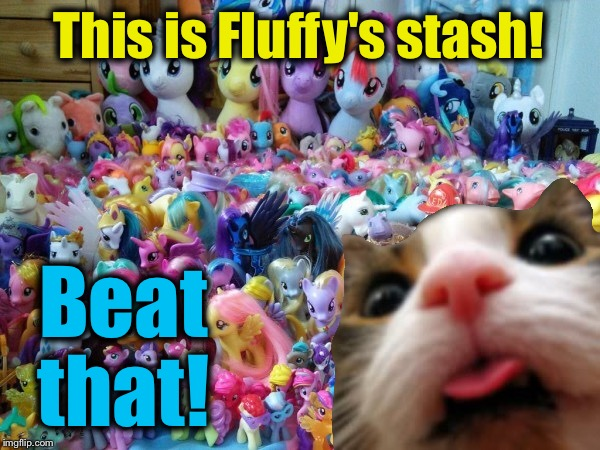 This is Fluffy's stash! Beat that! | made w/ Imgflip meme maker