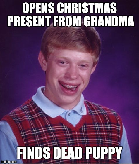 Bad Luck Brian Meme | OPENS CHRISTMAS PRESENT FROM GRANDMA FINDS DEAD PUPPY | image tagged in memes,bad luck brian | made w/ Imgflip meme maker