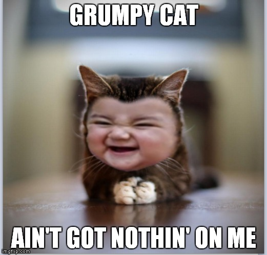 Evil toddler kitten declares war! | GRUMPY CAT AIN'T GOT NOTHIN' ON ME | image tagged in evil toddler kitten,grumpy cat,evil toddler,kitten,meme war | made w/ Imgflip meme maker