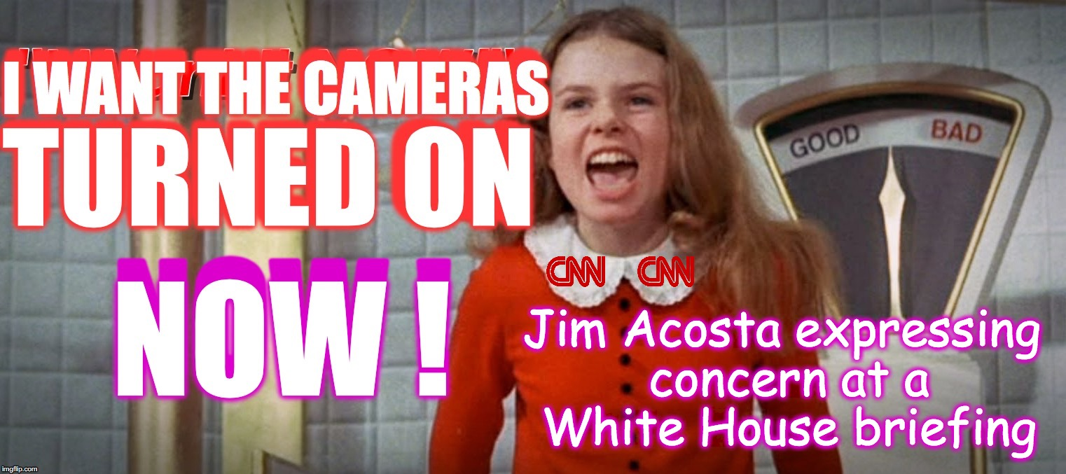 Jim Acosta expressing concern at a White House briefing | image tagged in veruca salt,cnn fake news | made w/ Imgflip meme maker