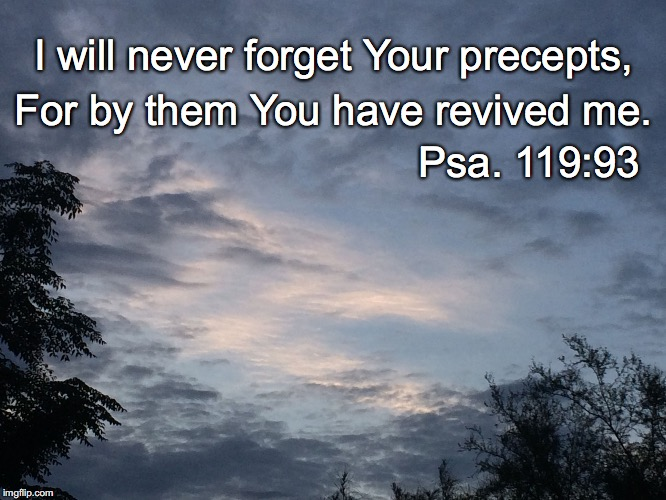 I will never forget Your precepts, For by them You have revived me. Psa. 119:93 | image tagged in precepts | made w/ Imgflip meme maker