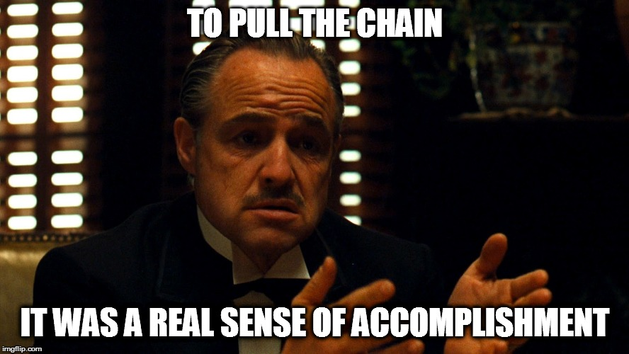 Don Corleone  | TO PULL THE CHAIN IT WAS A REAL SENSE OF ACCOMPLISHMENT | image tagged in don corleone | made w/ Imgflip meme maker