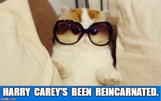 Chicago Cubs | HARRY  CAREY'S  BEEN  REINCARNATED. | image tagged in harry carey,meme | made w/ Imgflip meme maker